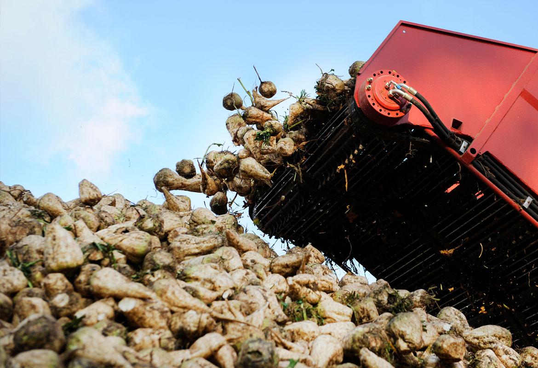 Kumera_Sugar Processing_Industries_Drives_Gearboxers_5